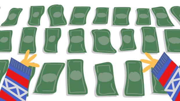 dollars (0;00;00;00)
