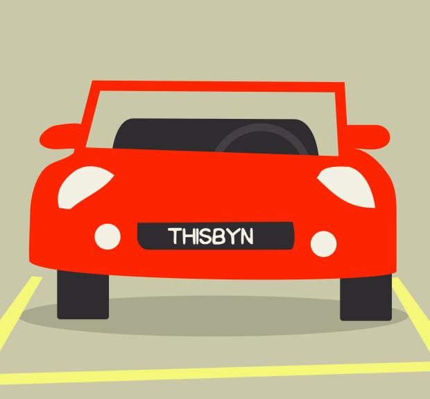 license plate-01