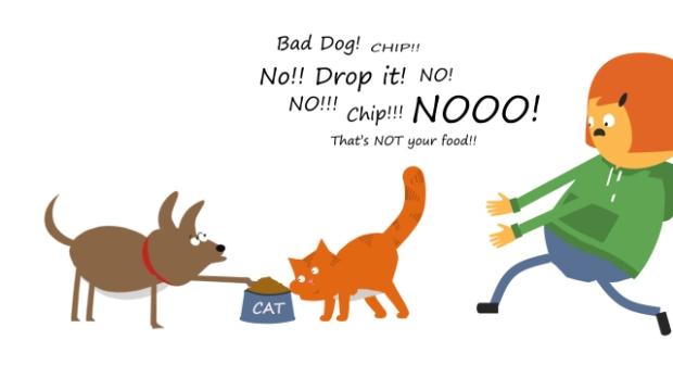 dog-problems-5